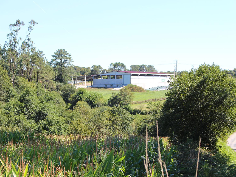 Ferrocar Casa Balexo